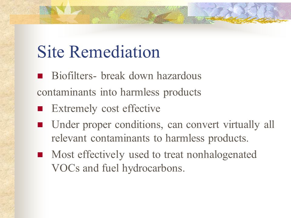 Site Remediation Biofilters- break down hazardous contaminants into harmless products Extremely cost effective Under proper conditions, can convert virtually all relevant contaminants to harmless products.