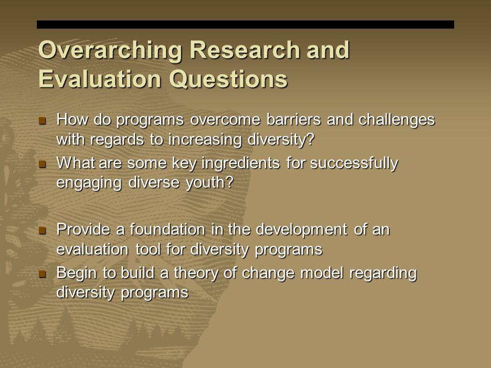 Overarching Research and Evaluation Questions How do programs overcome barriers and challenges with regards to increasing diversity? How do programs o