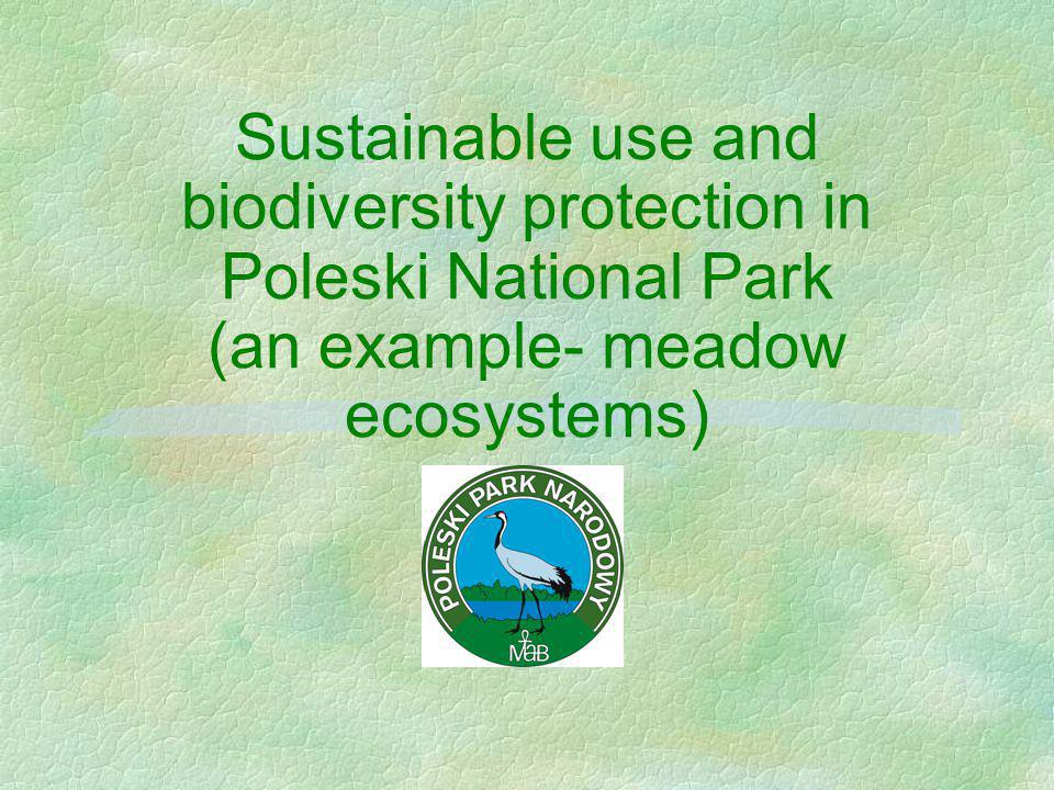 Sustainable use and biodiversity protection in Poleski National Park (an example- meadow ecosystems)