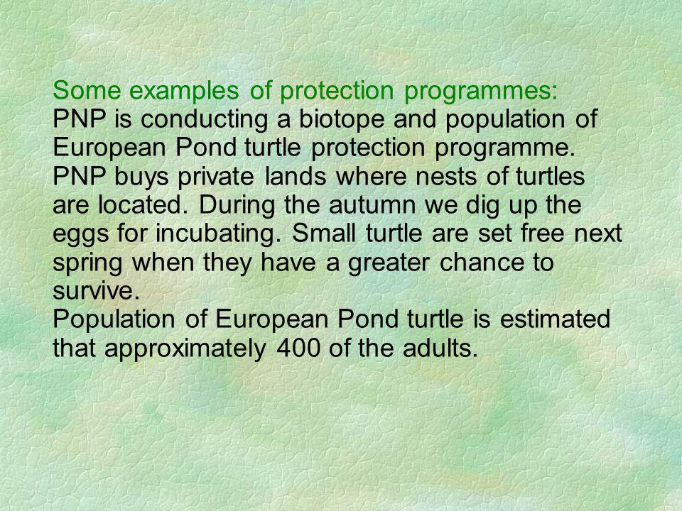 Some examples of protection programmes: PNP is conducting a biotope and population of European Pond turtle protection programme.