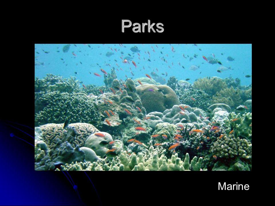 Parks Parks Marine