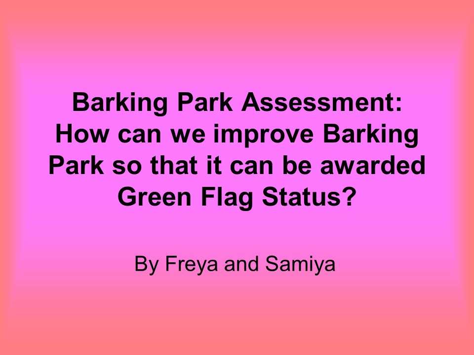 Barking Park Assessment: How can we improve Barking Park so that it can be awarded Green Flag Status.