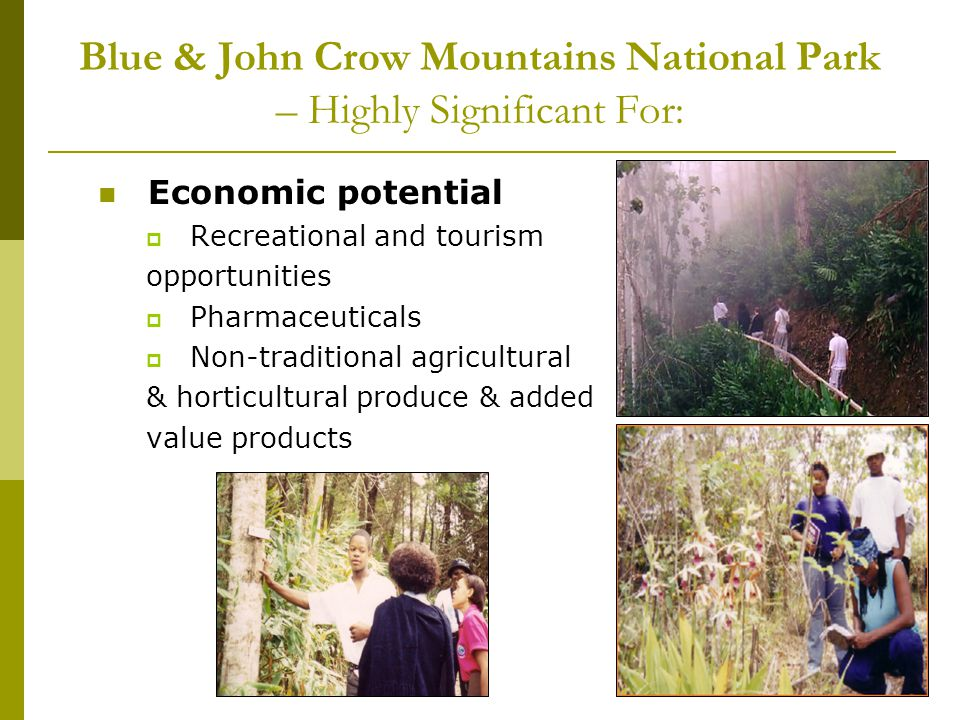 Recreation and Tourism Programme Goal: To provide recreational opportunities for local and international visitors using ecotourism principles to generate income and support for the park Objectives:- 1.