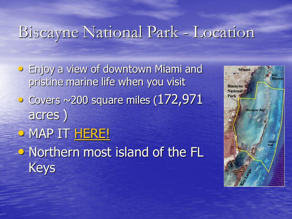 Biscayne National Park - Location Enjoy a view of downtown Miami and pristine marine life when you visit Enjoy a view of downtown Miami and pristine marine life when you visit Covers ~200 square miles ( 172,971 acres ) Covers ~200 square miles ( 172,971 acres ) MAP IT HERE.
