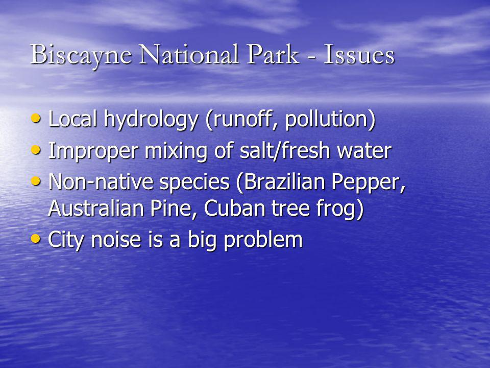 Biscayne National Park - Issues Local hydrology (runoff, pollution) Local hydrology (runoff, pollution) Improper mixing of salt/fresh water Improper mixing of salt/fresh water Non-native species (Brazilian Pepper, Australian Pine, Cuban tree frog) Non-native species (Brazilian Pepper, Australian Pine, Cuban tree frog) City noise is a big problem City noise is a big problem