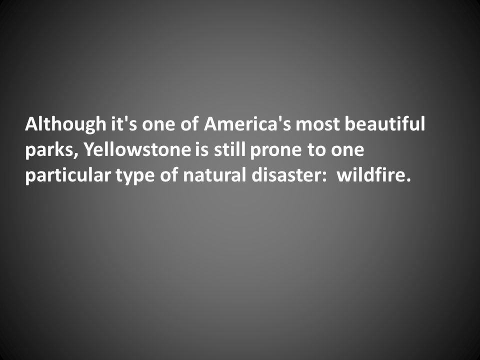 Although it's one of America's most beautiful parks, Yellowstone is still prone to one particular type of natural disaster: wildfire.
