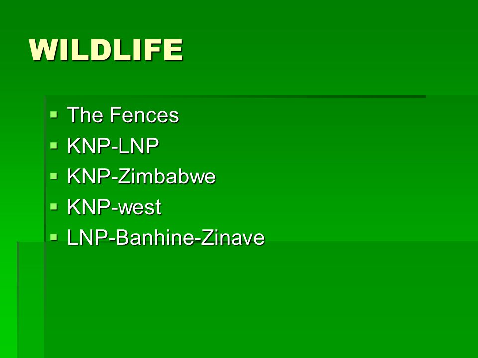 WILDLIFE The Fences The Fences KNP-LNP KNP-LNP KNP-Zimbabwe KNP-Zimbabwe KNP-west KNP-west LNP-Banhine-Zinave LNP-Banhine-Zinave