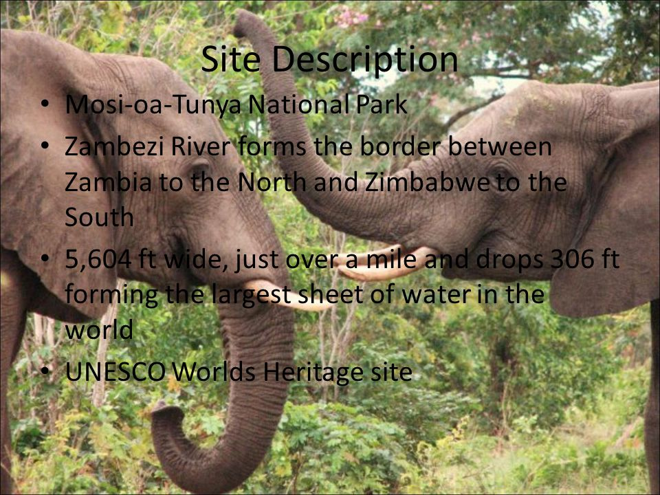 Site Description Mosi-oa-Tunya National Park Zambezi River forms the border between Zambia to the North and Zimbabwe to the South 5,604 ft wide, just over a mile and drops 306 ft forming the largest sheet of water in the world UNESCO Worlds Heritage site