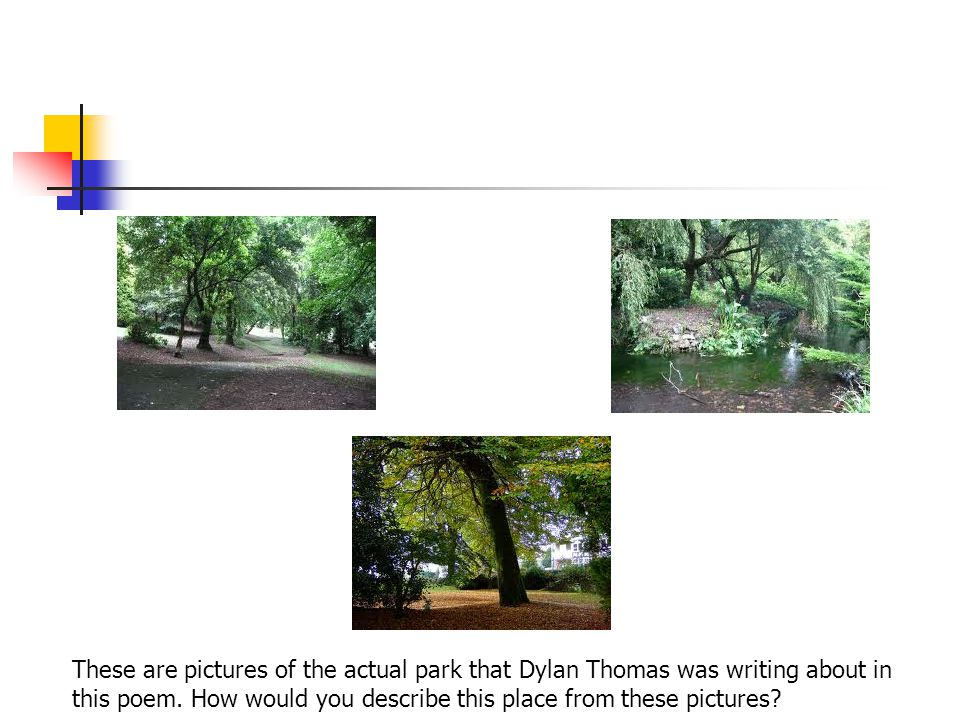 These are pictures of the actual park that Dylan Thomas was writing about in this poem.