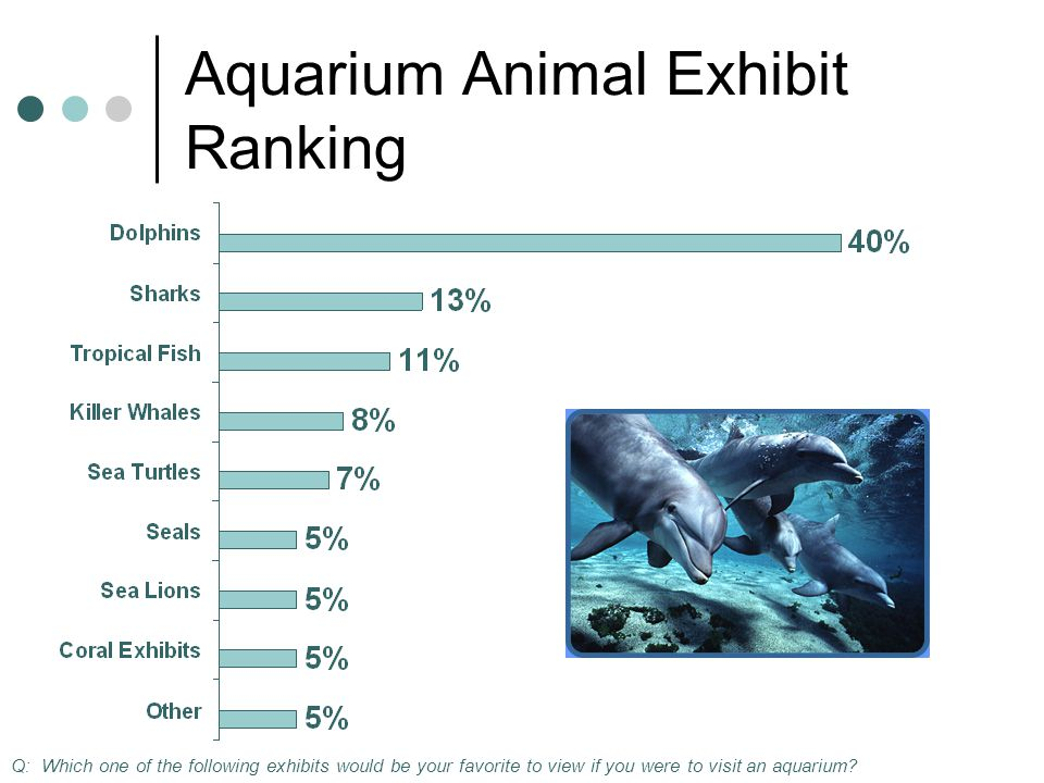 Aquarium Animal Exhibit Ranking Q: Which one of the following exhibits would be your favorite to view if you were to visit an aquarium
