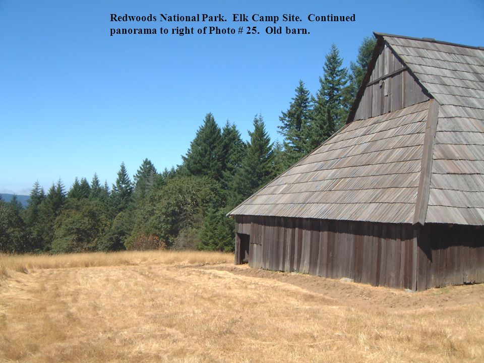 Redwoods National Park. Elk Camp Site. Continued panorama to right of Photo # 25. Old barn.