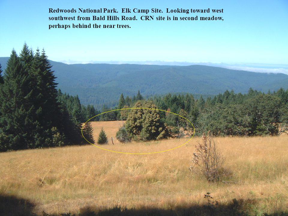 Redwoods National Park. Elk Camp Site. Looking toward west southwest from Bald Hills Road.