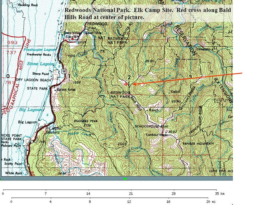 Redwoods National Park. Elk Camp Site. Red cross along Bald Hills Road at center of picture.