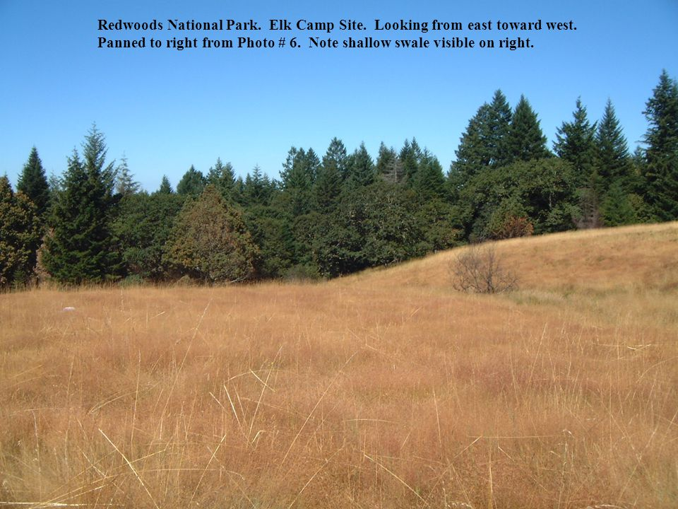 Redwoods National Park.Elk Camp Site. Red cross along Bald Hills Road at center of picture.