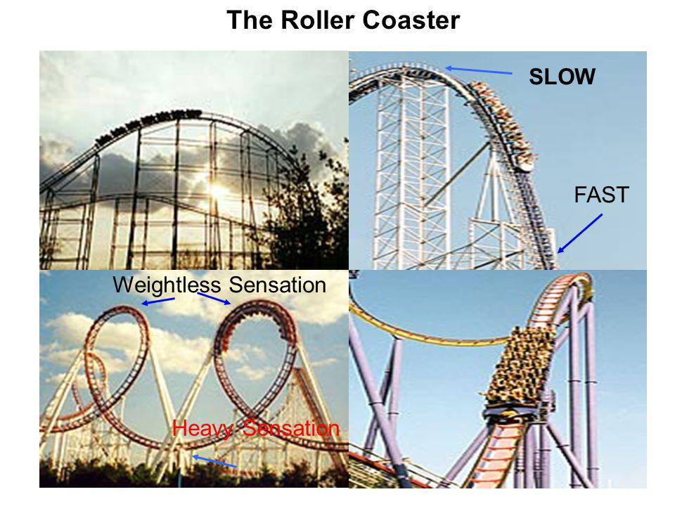 R How is Energy conserved in the roller coaster ride .