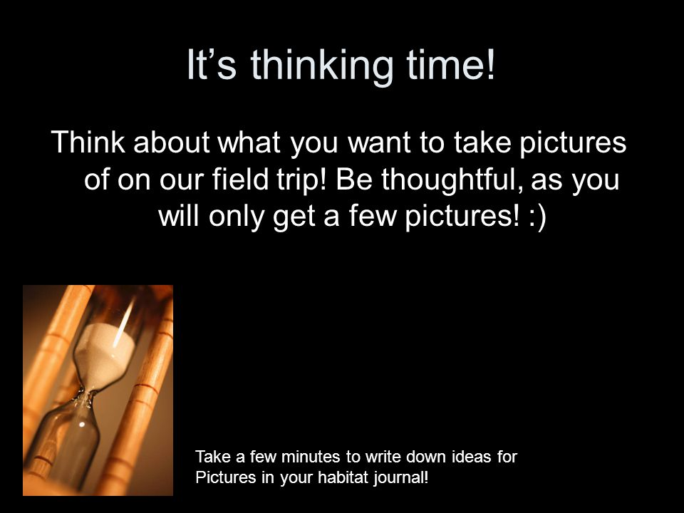 Its thinking time! Think about what you want to take pictures of on our field trip! Be thoughtful, as you will only get a few pictures! :) Take a few