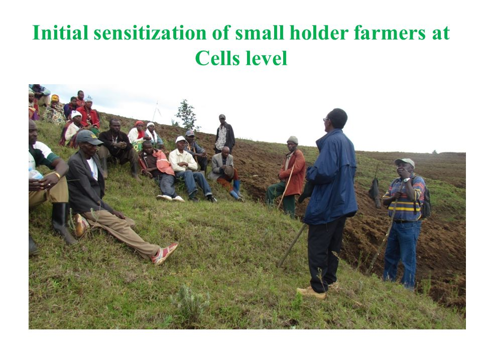 Initial sensitization of small holder farmers at Cells level