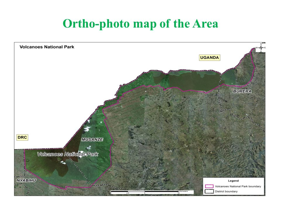 Ortho-photo map of the Area