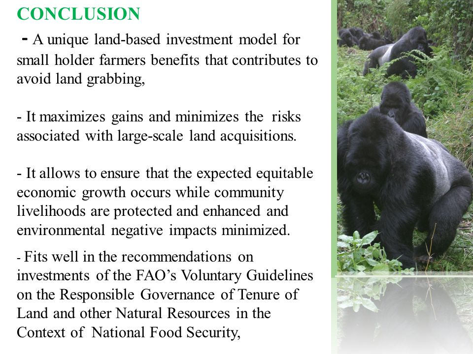 CONCLUSION - A unique land-based investment model for small holder farmers benefits that contributes to avoid land grabbing, - It maximizes gains and minimizes the risks associated with large-scale land acquisitions.