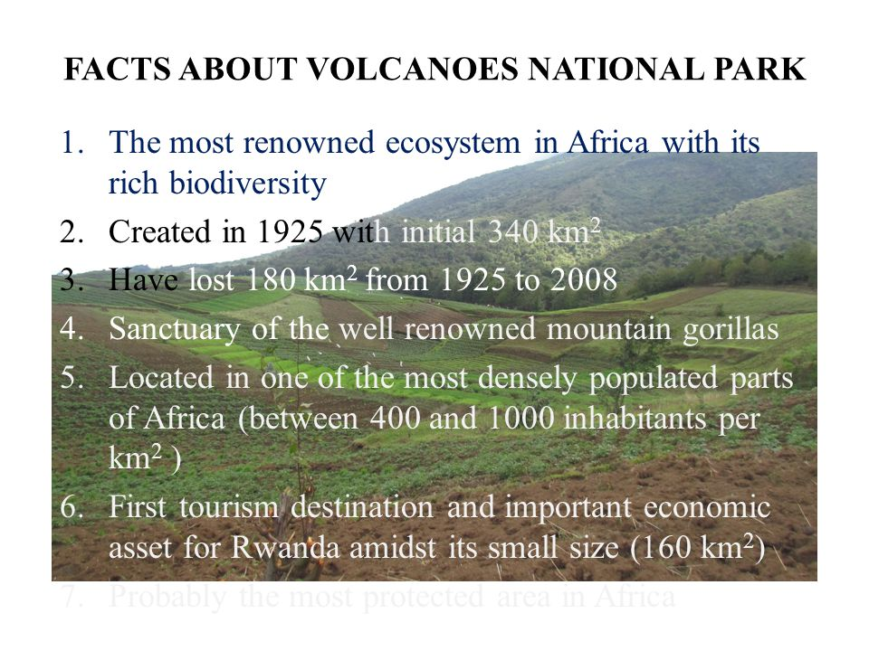 FACTS ABOUT VOLCANOES NATIONAL PARK 1.The most renowned ecosystem in Africa with its rich biodiversity 2.Created in 1925 with initial 340 km 2 3.Have lost 180 km 2 from 1925 to 2008 4.Sanctuary of the well renowned mountain gorillas 5.Located in one of the most densely populated parts of Africa (between 400 and 1000 inhabitants per km 2 ) 6.First tourism destination and important economic asset for Rwanda amidst its small size (160 km 2 ) 7.Probably the most protected area in Africa