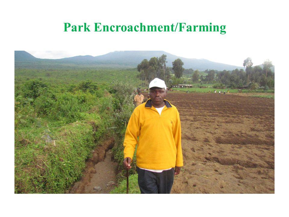 Park Encroachment/Farming