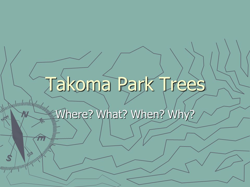 Takoma Park Trees Where? What? When? Why?