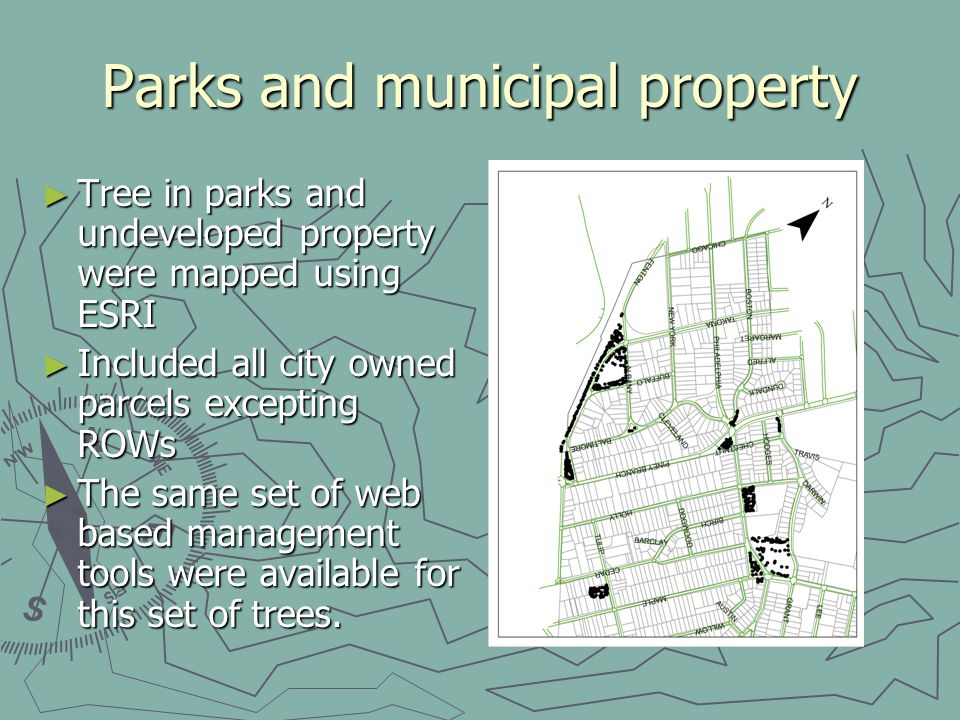 Parks and municipal property Tree in parks and undeveloped property were mapped using ESRI Tree in parks and undeveloped property were mapped using ESRI Included all city owned parcels excepting ROWs Included all city owned parcels excepting ROWs The same set of web based management tools were available for this set of trees.