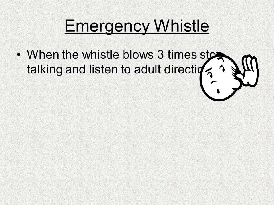 Emergency Whistle When the whistle blows 3 times stop talking and listen to adult directions.