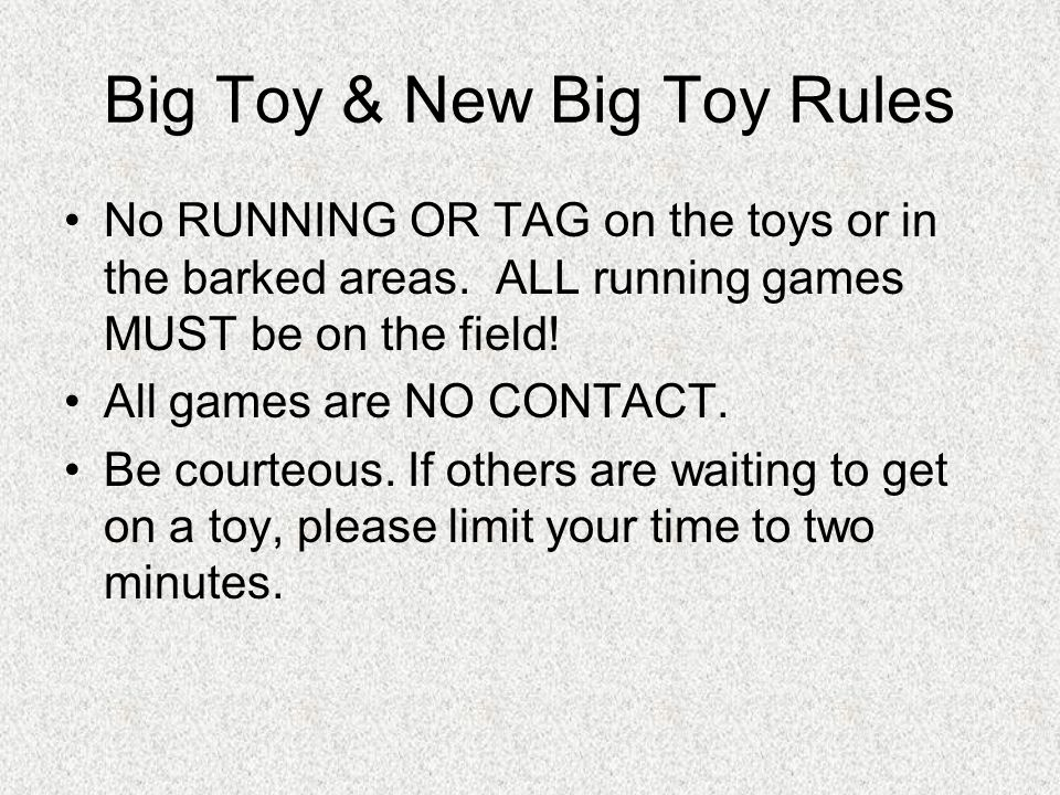 Big Toy & New Big Toy Rules No RUNNING OR TAG on the toys or in the barked areas. ALL running games MUST be on the field! All games are NO CONTACT. Be