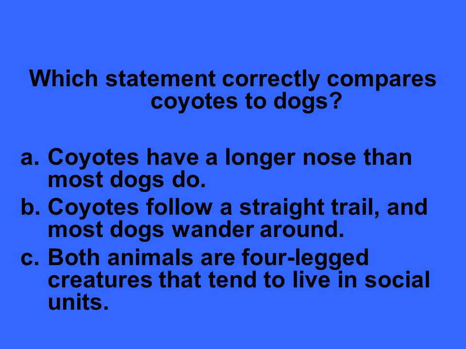 Which statement correctly compares coyotes to dogs.