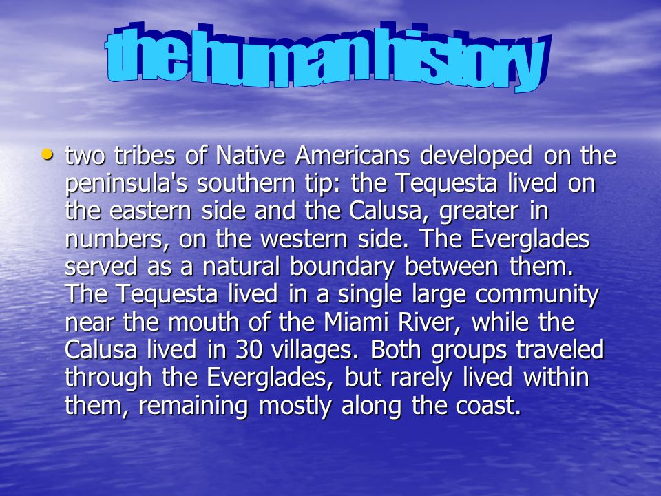 two tribes of Native Americans developed on the peninsula s southern tip: the Tequesta lived on the eastern side and the Calusa, greater in numbers, on the western side.