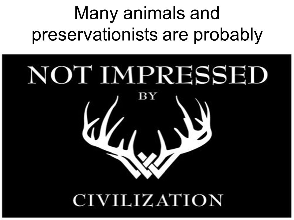 Many animals and preservationists are probably ….