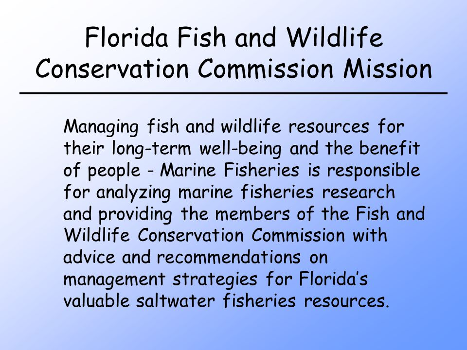Florida Fish and Wildlife Conservation Commission Mission Managing fish and wildlife resources for their long-term well-being and the benefit of people - Marine Fisheries is responsible for analyzing marine fisheries research and providing the members of the Fish and Wildlife Conservation Commission with advice and recommendations on management strategies for Floridas valuable saltwater fisheries resources.