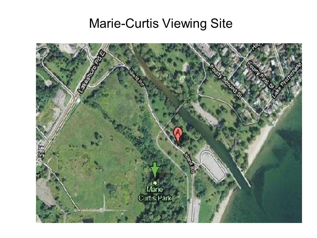 Marie-Curtis Viewing Site