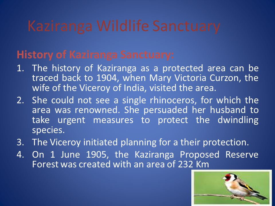Kaziranga Wildlife Sanctuary Animal kingdom: 1.Animal kingdom of the Sanctuary or the fauna is very rare.