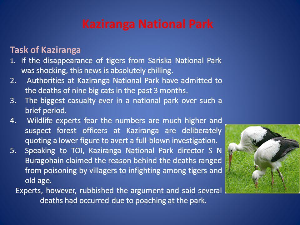 Kaziranga Wildlife Sanctuary Acknowledgement : I founded about Kaziranga Wildlife Sanctuary on internet sites are: www.Google.com, www.wikipedia.com, www.indiawildlifeerestos.com, and www.Kaziranga-National Park.com www.wikipedia.com www.indiawildlifeerestos.com www.Kaziranga-National