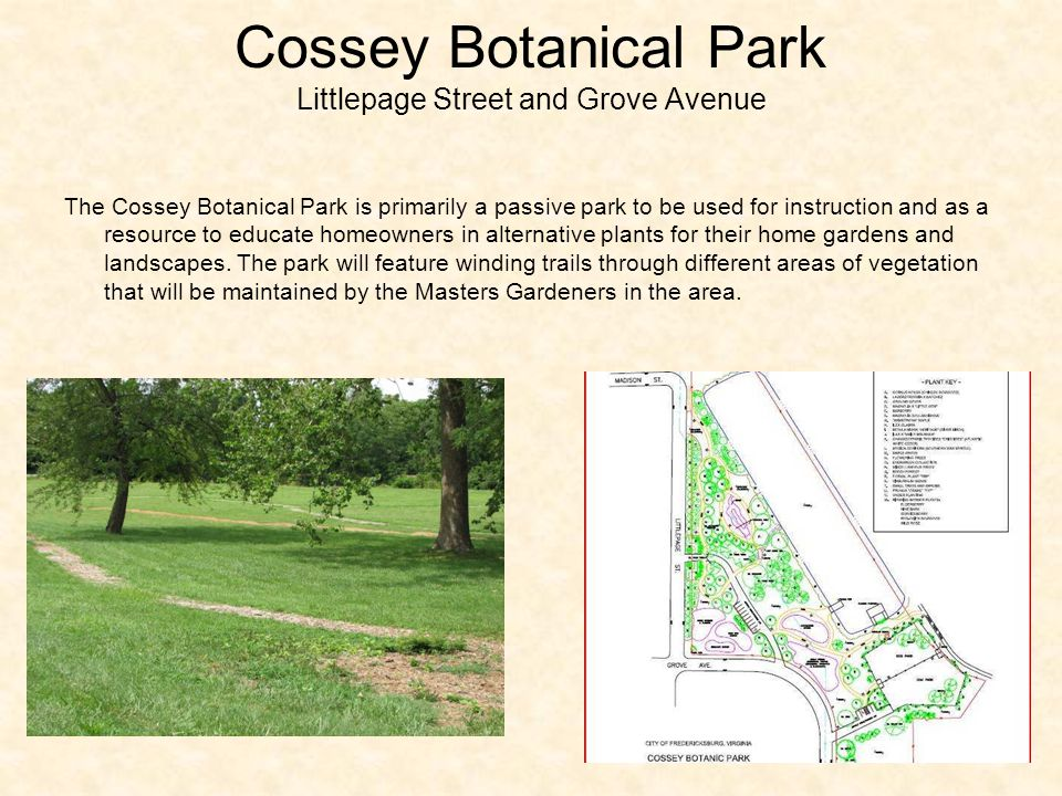 Cossey Botanical Park Littlepage Street and Grove Avenue The Cossey Botanical Park is primarily a passive park to be used for instruction and as a resource to educate homeowners in alternative plants for their home gardens and landscapes.