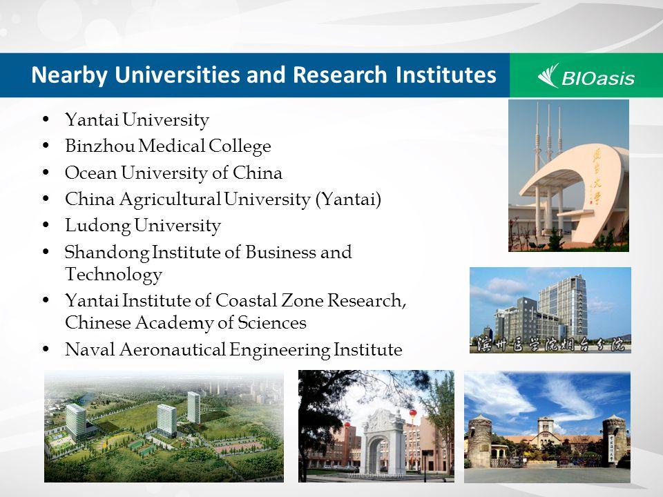 Yantai University Binzhou Medical College Ocean University of China China Agricultural University (Yantai) Ludong University Shandong Institute of Bus