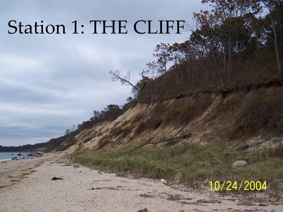 Station #4 Identifying Minerals in Caumsett Boulders