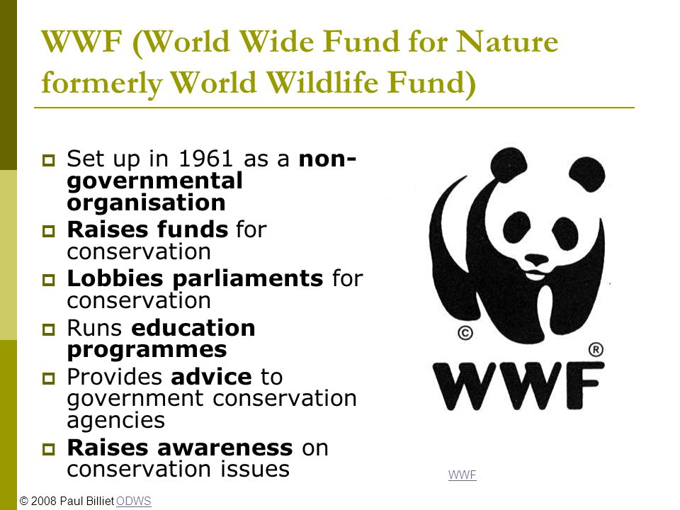 WWF (World Wide Fund for Nature formerly World Wildlife Fund) Set up in 1961 as a non- governmental organisation Raises funds for conservation Lobbies parliaments for conservation Runs education programmes Provides advice to government conservation agencies Raises awareness on conservation issues WWF © 2008 Paul Billiet ODWSODWS