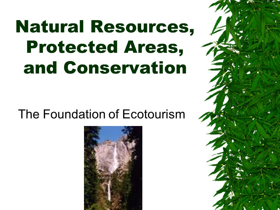 Natural Resources, Protected Areas, and Conservation The Foundation of Ecotourism