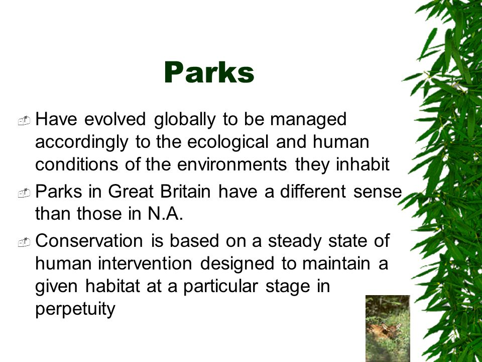 Parks Have evolved globally to be managed accordingly to the ecological and human conditions of the environments they inhabit Parks in Great Britain have a different sense than those in N.A.