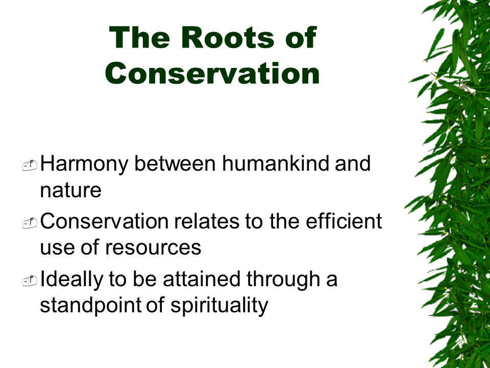 The Roots of Conservation Harmony between humankind and nature Conservation relates to the efficient use of resources Ideally to be attained through a standpoint of spirituality