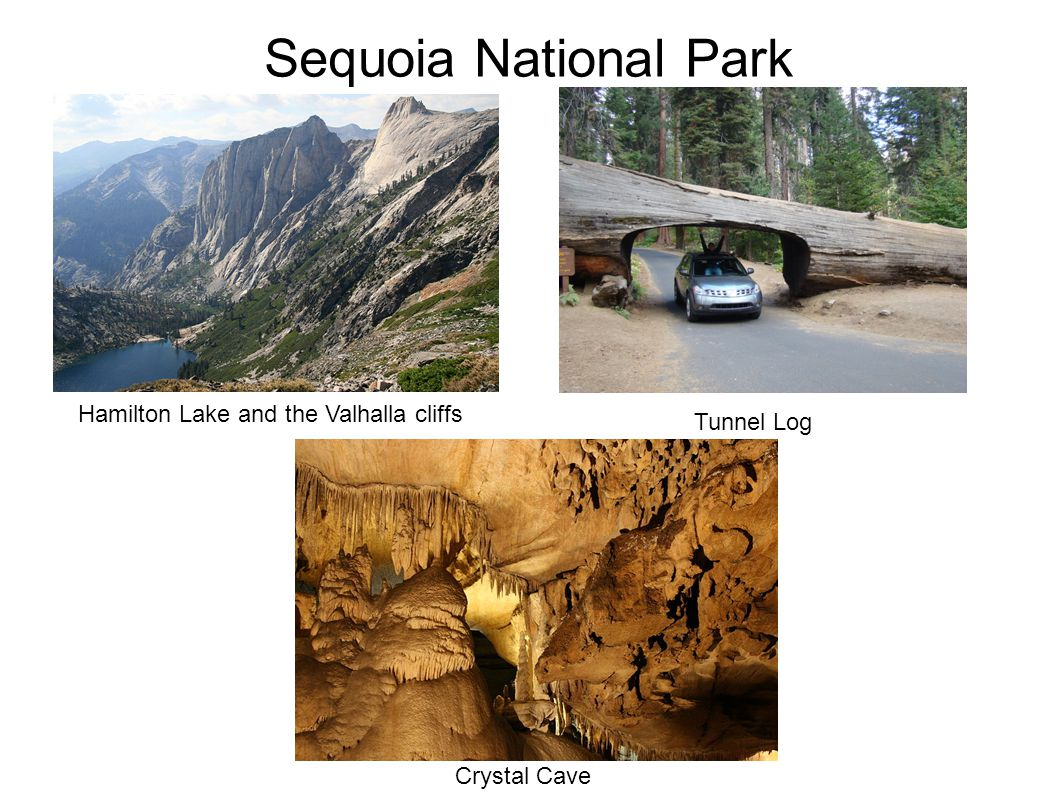 Sequoia National Park Crystal Cave Hamilton Lake and the Valhalla cliffs Tunnel Log
