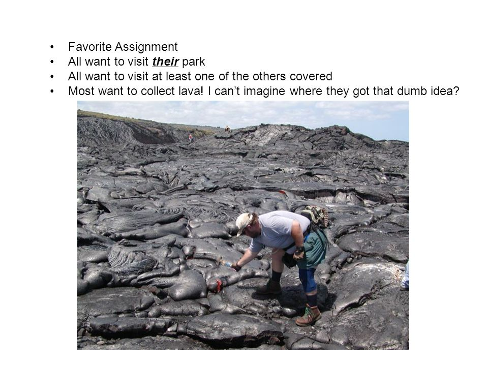 Favorite Assignment All want to visit their park All want to visit at least one of the others covered Most want to collect lava.