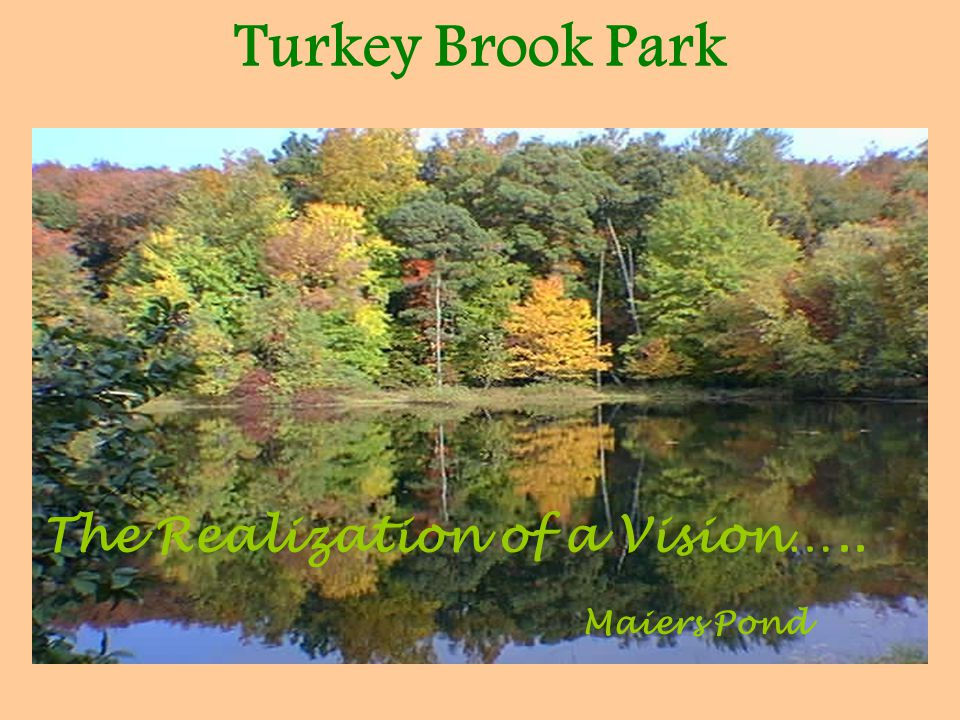 Turkey Brook Park Maiers Pond The Realization of a Vision…..