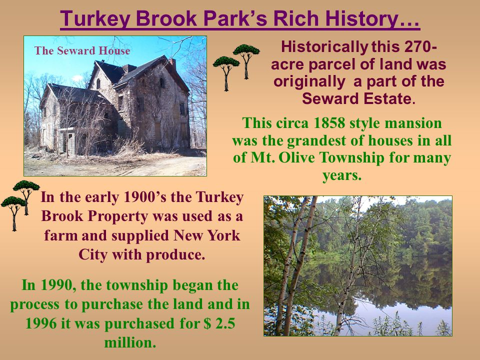 Turkey Brook Parks Rich History… Historically this 270- acre parcel of land was originally a part of the Seward Estate.