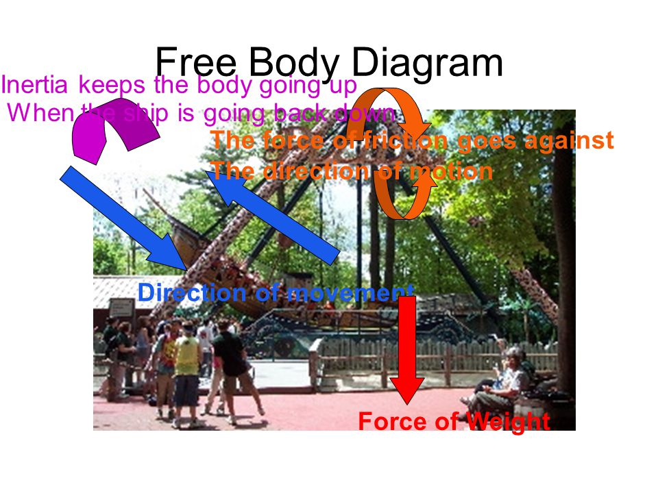 Free Body Diagram Direction of movement Force of Weight The force of friction goes against The direction of motion Inertia keeps the body going up When the ship is going back down