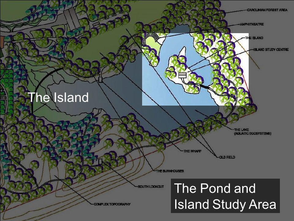 The Pond and Island Study Area The Island