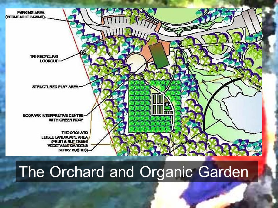 The Orchard and Organic Garden